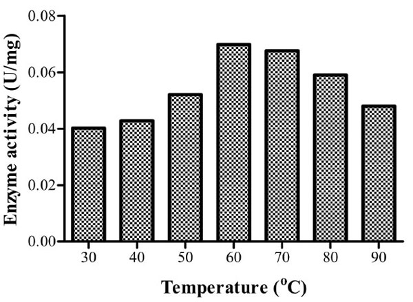 temperature on enzyme activity applications