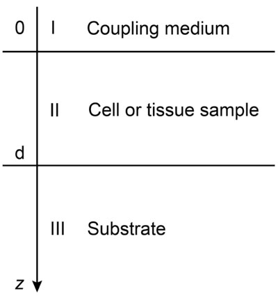 Cell Indexing Matlab